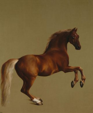 Whistlejacket (1762) - George Stubbs